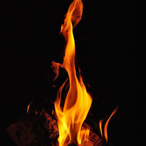 When it comes to fire tinder in a survival situation,  you have dozens of resources available
